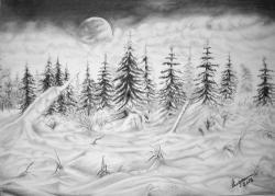 Picturi alb negru Iarna pe munte