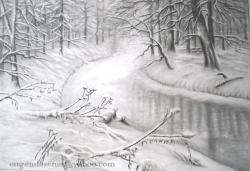 Picturi alb negru vis de iarna