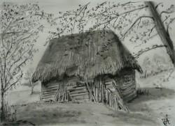 Picturi alb negru La margine de padure