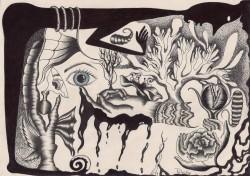 Picturi alb negru Vision