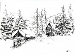 Picturi alb negru Iarna