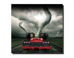 Picturi canvas Shelby SuperCars