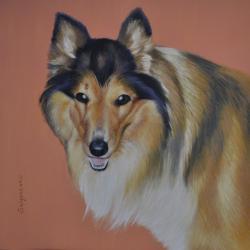 Picturi cu animale Border Collie