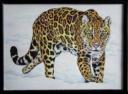 Picturi cu animale Leopard pe zapada