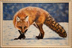 Picturi cu animale Vulpea pe zapada