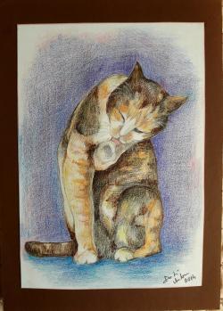 Picturi cu animale Peticita