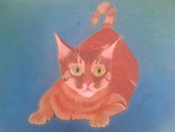 Picturi cu animale Un pisica