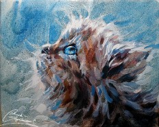 Picturi cu animale Motanelul
