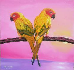 Picturi cu animale Aratinga soarelui