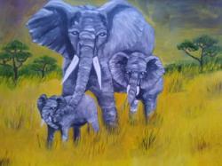 Picturi cu animale elefantii--cod100