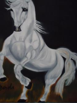Picturi cu animale ponei cod 0077