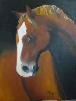 Picturi cu animale toollie
