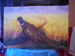 Picturi cu animale t339