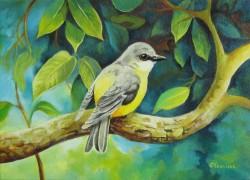 Picturi cu animale Pasare