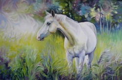 Picturi cu animale Singur