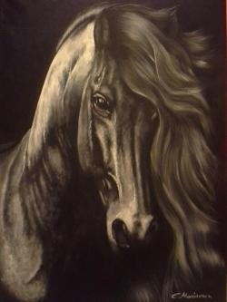 Picturi cu animale black horse