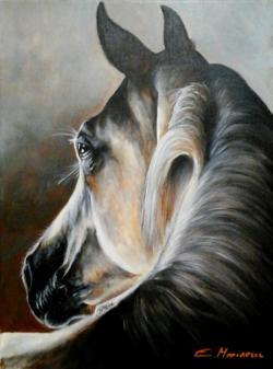 Picturi cu animale Cal alb visator