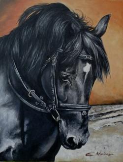 Picturi cu animale Cal negru 1