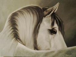 Picturi cu animale Pe furis