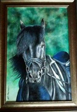 Picturi cu animale pictura Black beauty