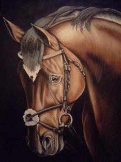 Picturi cu animale pictura cu cap de cal
