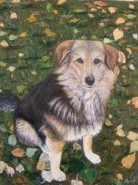 Picturi cu animale Strajerul