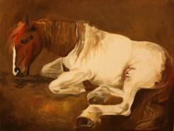 Picturi cu animale Spirit