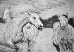 Picturi cu animale libertini