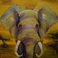 Picturi cu animale Elefant african