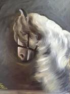 Picturi cu animale Studiu cabalin