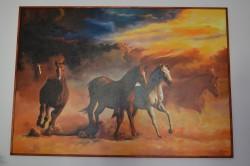 Picturi cu animale Galop