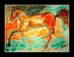 Picturi cu animale Cal superb