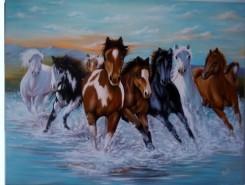 Picturi cu animale Cai prin apa