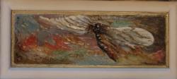 Picturi cu animale libelula