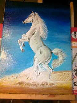 Picturi cu animale Cal alb in desert