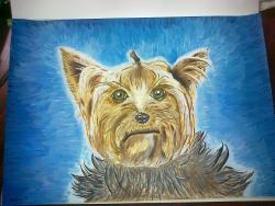 Picturi cu animale Jigodel