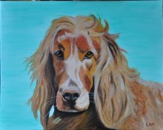 Picturi cu animale Ben