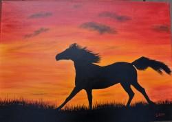 Picturi cu animale Cal in apus
