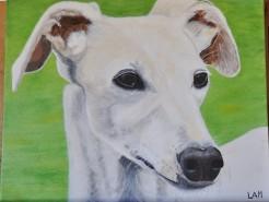 Picturi cu animale Cleo