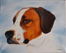 Picturi cu animale Lucky
