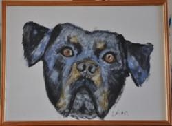 Picturi cu animale Rotty