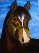 Picturi cu animale Te iubesc!