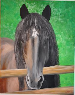 Picturi cu animale Menco
