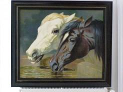 Picturi cu animale Cai