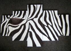 Picturi cu animale Cap zebra