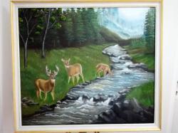 Picturi cu animale In linistea padurii