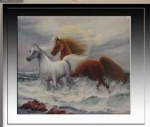Picturi cu animale Cai----48