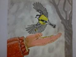 Picturi cu animale Necuvantatoare1