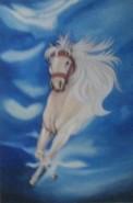 Picturi cu animale The white horse