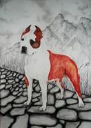 Picturi cu animale Portret amstaff oscar